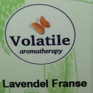 lavendel france